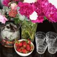 Комплект стаканов для воды 2ед Web 200 мл